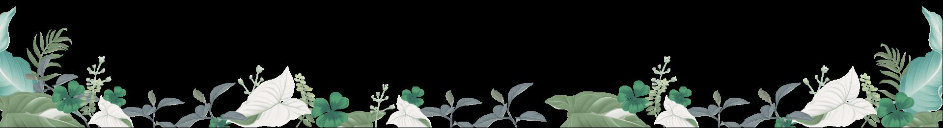 L'alyana Phú Quốc- Chủ Đầu Tư Dự Án L'alyana Senses World 52